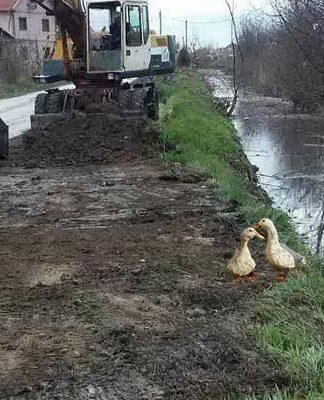 Čišćenje kanala