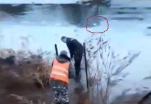 Policajac spašava psa